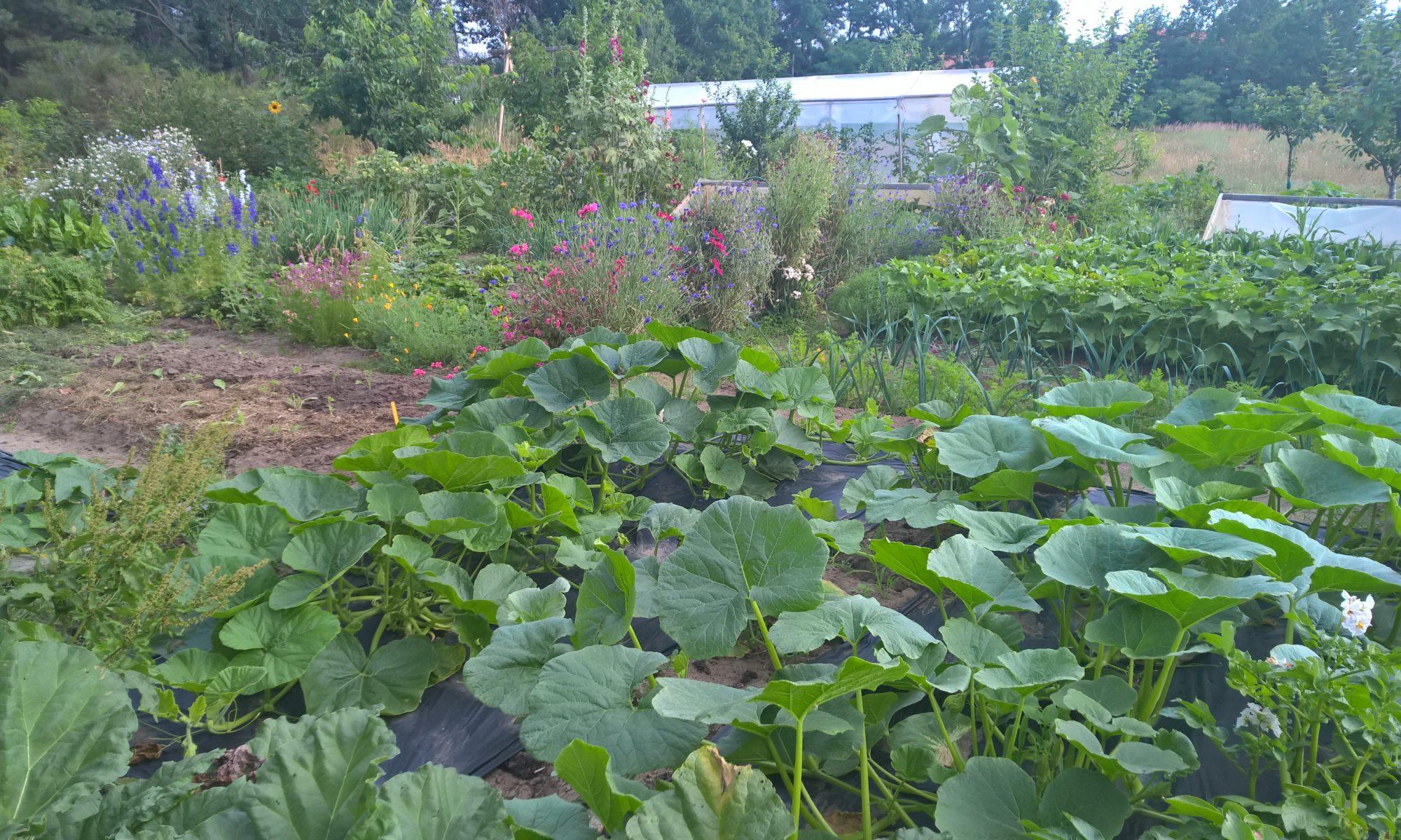Essbare Gärten